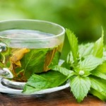 proven weight loss green tea